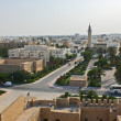 Kind on the city of Monastir from a fortress of Ribat. — Stock Photo