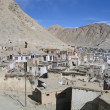 Ladakh, India, a kind on capital Leh and mountains surrounding it. — Stock Photo