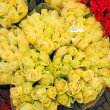 The Netherlands, Haarlem. Flowers in the market. — Stock Photo