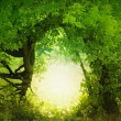 Door to the fairy land - Stock Photo