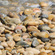 Royalty-Free Stock Photo: Pebbles background