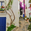 Royalty-Free Stock Photo: A street of Cadaques, Spain