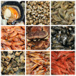 Seafood collage - Stock Photo