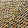 Detail of an old roof made with tiles — Stock Photo