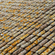 Detail of an old roof made with tiles — Stock Photo #3798020