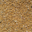Coarse-grained sand background — Stock Photo