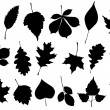 Vector illustration set of 18 autumn leaf silhouettes. — Stock Vector