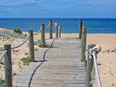 Path to beach — Stock Photo