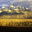 Grand Teton, Wyoming - Stock Photo