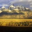 Grand Teton, Wyoming — Stock Photo #3553662