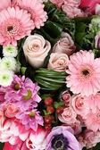 Różowe kwiaty — Zdjęcie stockowe