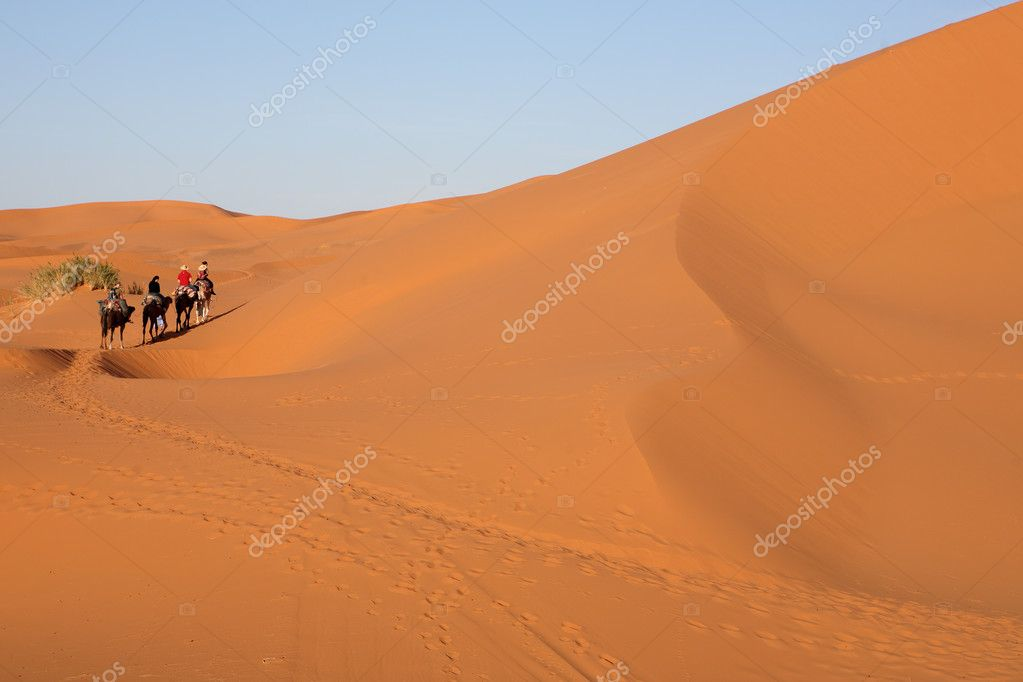 Desert  Stock Photo #3551123