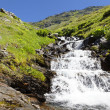 Stock Photo: Alpine torrent