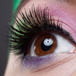 Modern fashion makeup of a female eye - macro shot — Stock Photo