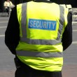 Security — Stock Photo #3531364