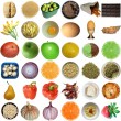 Food collage isolated - Stock Photo