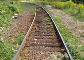 Railway railroad tracks — Foto Stock