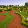 Avenue and bed in formal garden — Stock Photo #3795264
