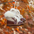 Children's warm boots on a tree in the autumn — Stock Photo
