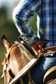 Cowboy — Stock Photo