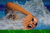 Freestyle swimmer — Stock Photo