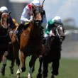 Stock Photo: Horse racing 1