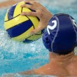 Waterpolo action — Stock Photo #3531996