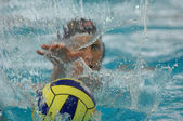 Waterpolo action 2 — Photo