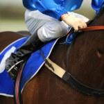 Horserider — Stock Photo #3635532