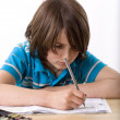 Stock Photo: School boy learning