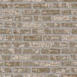 Grungy Brick Pattern in Beige - Stock Vector