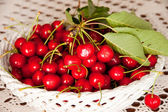 Basket of cherries — Stock Photo
