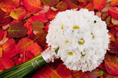 Wedding bouquet — Stock Photo