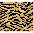 A tiger pattern skin — Stock Vector