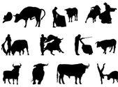 Matador and bulls silhouette — Stock Vector