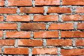 Grunge old bricks wall texture — Photo