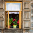 Retro Window and red flowers — Stok fotoğraf