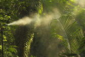 Irrigation sprinkler — Stock Photo