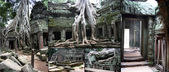 Tomb Raider Temple at Angkor,Camboya — Stock fotografie