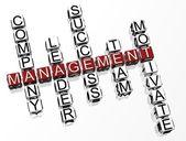 3D Management Crossword — Stock Photo