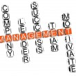 Management Crossword — Stock Photo