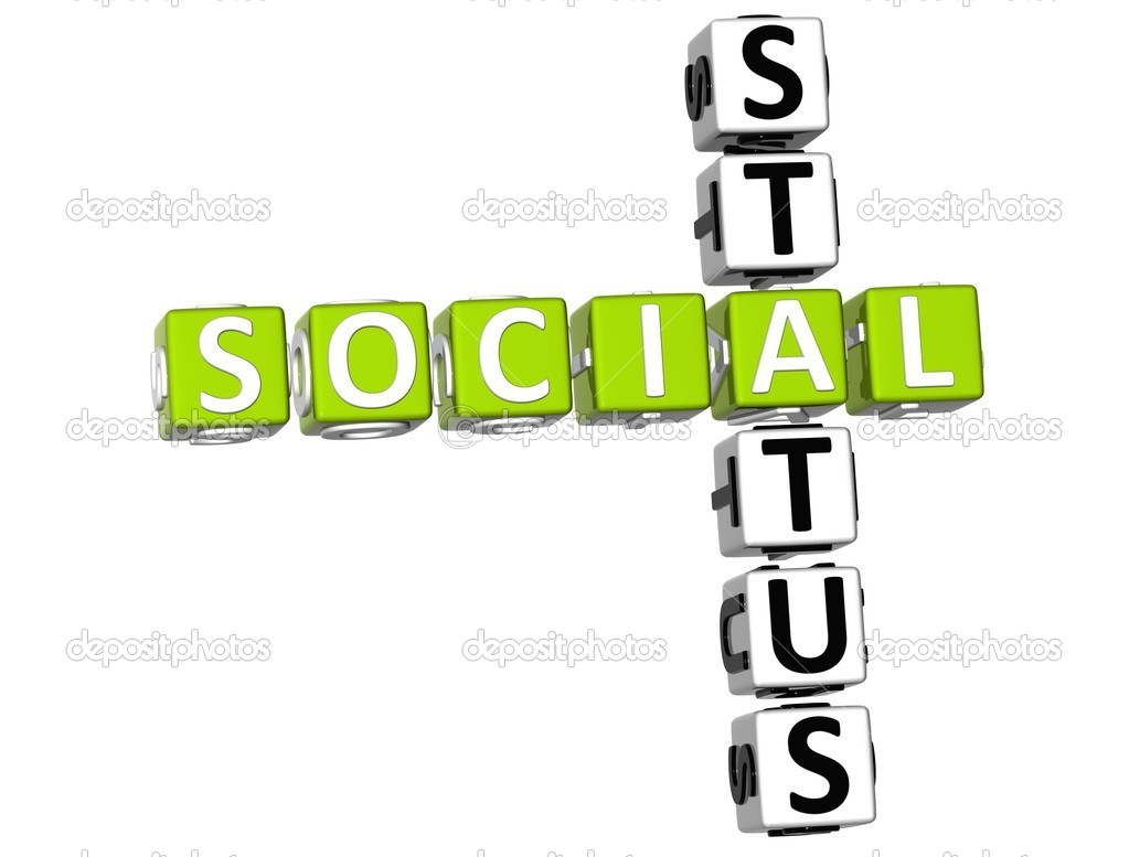 social status Where you fall on the social class ladder determined by occupation, wealth, net worth, dress and manners can be divided into different segments such as homeless all.