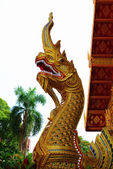 Golden naga — Stock Photo