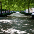Path through city park in Konstanz, Germany — Zdjęcie stockowe #3631431
