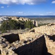 Stock Photo: El Ruins in Morro National Monument