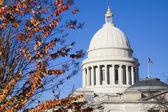 Little Rock, Arkansas - State Capitol — Stock Photo