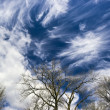 Amazing Cirrus clouds — Stock Photo