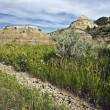Badlands in Theodore Roosevelt National Park — Stock Photo #3580215