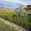 Badlands in Theodore Roosevelt National Park — Stock Photo