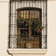 Stock Photo: Window in Antigua